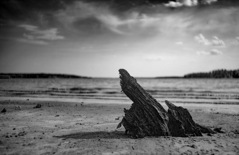 Sony A7R II w/ Leica Summaron 35mm f/3.5